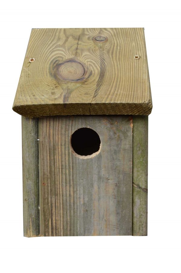 Vogelhuisje 04